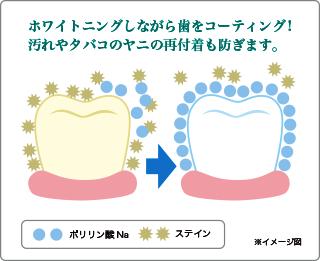 ホワイトニングをしながら歯をコーティング!汚れやタバコのヤニの再付着も防ぎます。